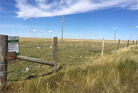 Fence lined with vinyl clips stretch across the prairie at NCC's Wideview property in Saskatchewan. (Photo by Bill Armstrong)
