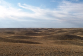 Rolling prairie at Old Man on His Back Prairie and Heritage Conservation Area, SK (Photo by Branimir Gjetvaj)
