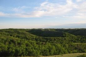 Qu'Appelle River Valley, Saskatchewan (Photo by NCC)