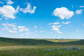Wideview, SK (Photo by Bill Armstong)