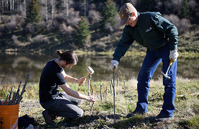 Willow livestake planting at W. Hutchinson property, AB (Photo by NCC)