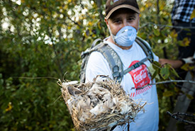 Volunteer Norm with contents of a bird box (Photo by Brent Calver)