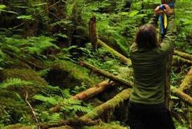Leah Ballin marking a monitoring plot, Ellerslie Lake, British Columbia (Photo by Tim Ennis/NCC)