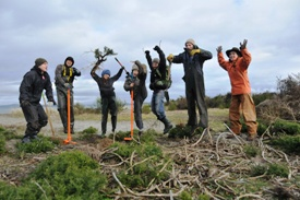 Conservation Volunteers removing invasive species from sand dunes at James Island (Photo by NCC)