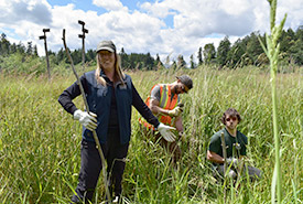 The Wetlands Workforce crew installing live stakes at Chase Woods Nature Preserve (Photo by Cheyenne Bergenhenegouwen, BCWF Wetlands Workforce)