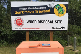 Firewood disposal site (Photo by NCC)