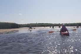 Kayakers on Husavik Coastal Wetlands (Photo by NCC)