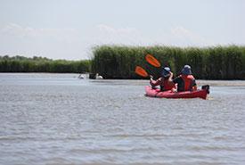 Kayakers on Husavik Coastal Wetlands (Photo by Rob Jantz/Prairie Sea Kayaks)