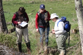 Recording riparian plant species in Riding Mountain Natural Area, MB (Photo by NCC)