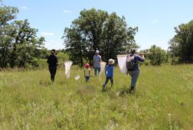 Bénévoles pour la conservation, Waggle Springs, Man. (Photo de S. Murray)