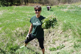 Garlic mustard are no match against our staff (Photo by NCC)