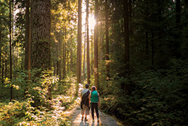 This summer, NCC is launching Nature Score, a program that lets you discover how connected you are to nature. (Photo by iStock)