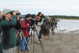 NCC birding workshop and survey in Miscou Island, NB (Photo by NCC)