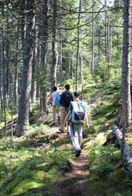 Hiking at Black Beach trail (Photo by NCC)