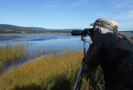 Birders at Conservation Volunteers event, Codroy Valley, NL (Photo by NCC)
