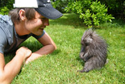 Todd the Porcupine and Macall Robinson, Shell conservation intern, Nova Scotia (Photo by NCC)