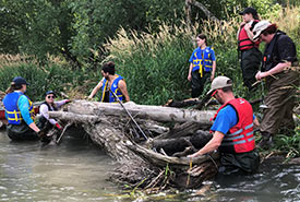 Conservation volunteers helping to anchor woody debris to the banks of the Mad River in Minesing Wetlands (photo by NCC)