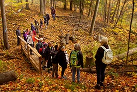 Hike in Happy Valley Forest, ON (Photo by NCC)