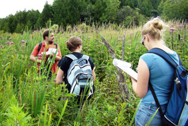 NCC Ontario staff identify meadow marsh plants, Lower Maitland River Valley, Ontario (Photo by NCC)