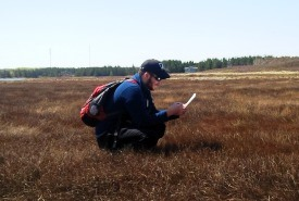 NCC Conservation Intern Mitchell MacMillan working in the field, PEI (Photo by NCC)