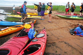 Conservation Volunteer event, Boughton Island, Prince Edward Island (Photo by NCC)