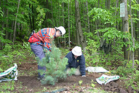 Conservation volunteers in the Montreal Greenbelt, Quebec (Photo by NCC)