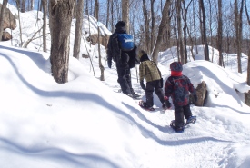 Out for a snowshoe in Gatineau Parc, QC (Photo by DJ)