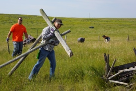 Conservation Volunteers cleaning up at Old Man On His Back, SK (Photo by Gail Chin)