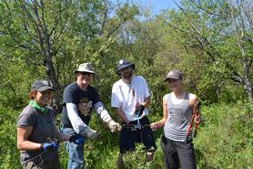 CV volunteers removing fence in Saskatchewan