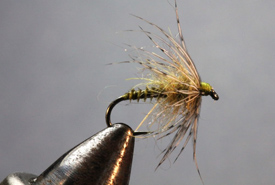 BWO hackle tied by Bryon Haugh (Photo by Hans Weilenmann)